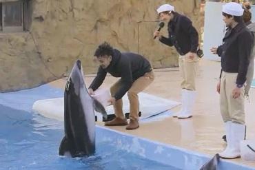 男方接過由海豚-Totto運來的箱子